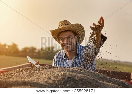Happy Farmer Sitting In Trailer Full Of Sunflower Seeds