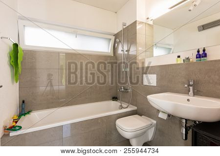 Bright modern bathroom with tiles. Nobody inside