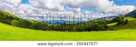Panorama Of Green Alpine Meadow In Autumn. Forested Hills And Distant Mountain Ridge In Good Weather