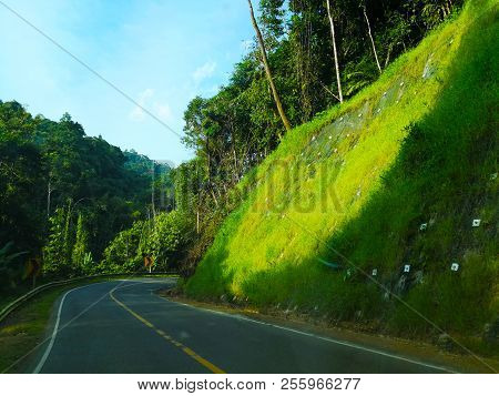 The Road Along The Hill, Which Is The Way Down The Hill. One Side Is The Chasm With Lot Of Trees. An