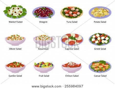 Salad Vector Healthy Food With Fresh Vegetables Tomato Or Potato In Salad-bowl Or Salad-dish For Din