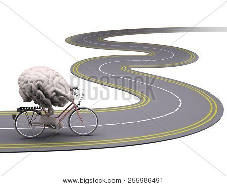 Human Brain With Arms And Legs On Bicycle On The Road, 3d Illustration