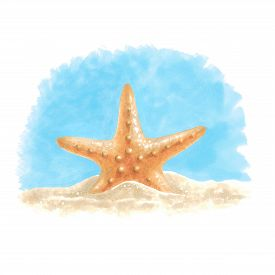 Starfish In The Sand. Sketch Done In Alcohol Markers. You Can Use For Greeting Cards, Posters And De