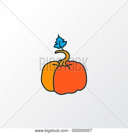 Pumpkin Icon Colored Line Symbol. Premium Quality Isolated Gourd Element In Trendy Style.
