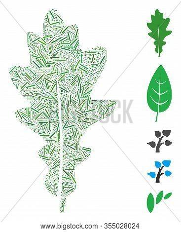 Line Mosaic Based On Oak Leaf Icon. Mosaic Vector Oak Leaf Is Designed With Scattered Line Spots. Bo