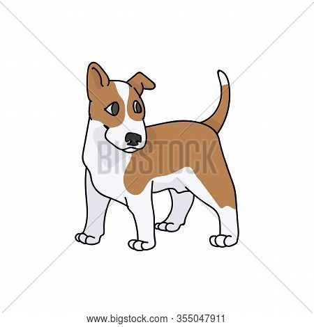 Cute Cartoon Bull Terrier Puppy Breed Vector Clipart. Pedigree Kennel Show Dog For Dog Lovers. Pureb
