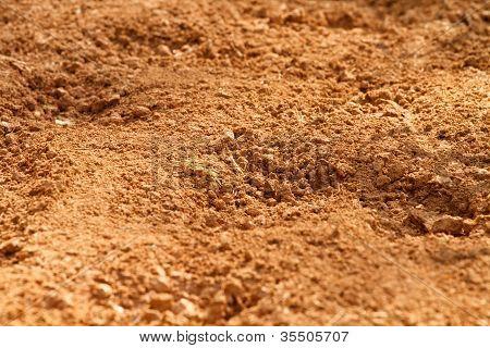 Red Clay Soil Dirt In A Farm Field