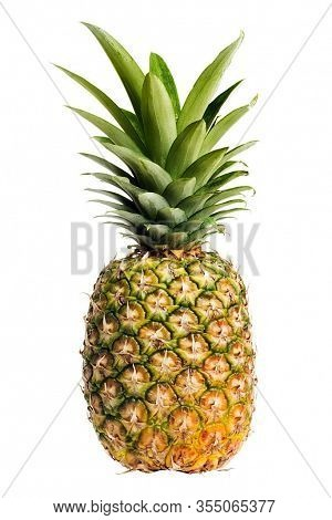 Pineapple. Isolated Pineapple. Fresh Pieces Of Unpeeled Pineapple Fruit.