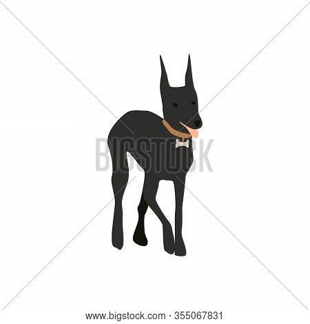 Vector Illustration Of Cartoon Dog Doberman Pinscher In Flat Minimalist Style. Isolated On White.