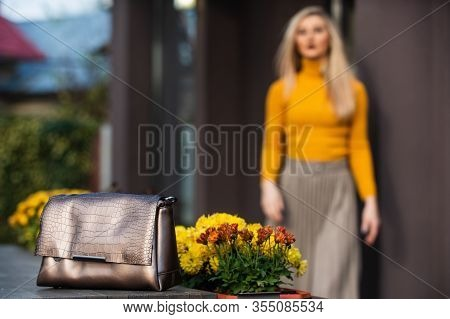 Going Over Details. Fashionable Accessories Concept. Matching Accessories. Gold Handbag For Woman, S