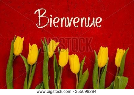 Yellow Tulip Flowers, Red Background, Text Bienvenue Means Welcome