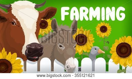 Farm Animals, Agriculture Vector Design. Farm Field, Cow, Goose Bird And Donkey With Sunflower Plant