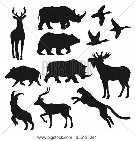 Duck Bird, Bear And Deer Wild Animal Black Silhouettes. Hunting Sport And Safari Vector Theme. Wild