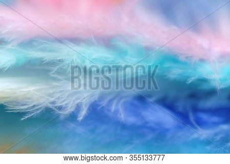 Feathers In Pastel Colors.blue, Pink, Turquoise Feathers Set Close-up Background.soft Focus. Multico