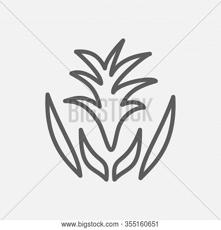 Guzmania Icon Line Symbol. Isolated Vector Illustration Of Icon Sign Concept For Your Web Site Mobil