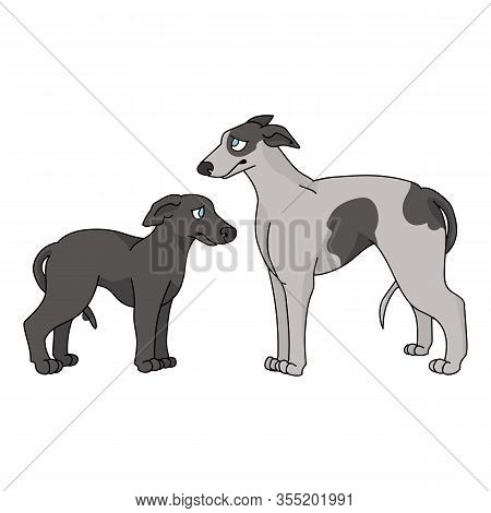 Cute Cartoon Greyhound Dog And Puppy Breed Vector Clipart. Pedigree Kennel Racing Hound For Dog Love