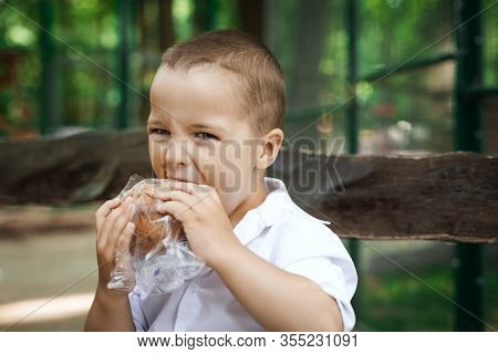 Adorable Kid Boy Eating A Bun Sitting On A Wooden Bench In The Park. Fun Holiday Concept