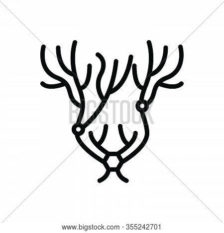 Black Line Icon For Nerve Jitters Veins  Vena Artery Structure Neuron Anatomy Biology Impulse