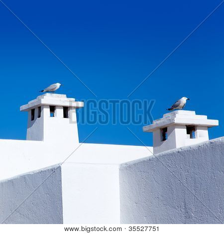 Balearic Mediterranean white houses with seagull in chimneys poster