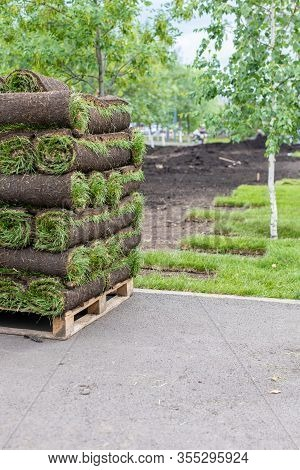 Stacks Of Sod Rolls For New Lawn For Landscaping. Lawn Grass In Rolls On Pallets. Rolled Grass Lawn
