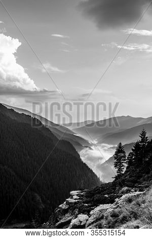 Black And White Composition Of Mountain Rock And Trees In The Foreground With Foggy Forest Covered M