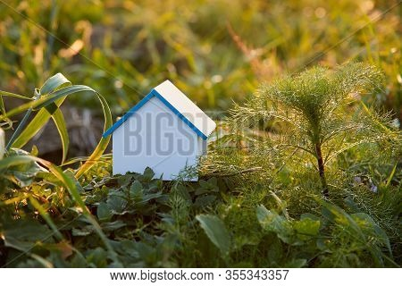 Ecologically Clean Home. Blank Model Of House Surrounded By Greenery Of Nature. Ecological And Consc