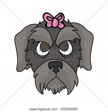 Cute Cartoon Schnauzer Puppy With Pink Bow Face Vector Clipart. Pedigree Kennel Doggie Breed. Purebr