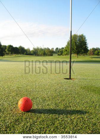 Orange Ball On Green