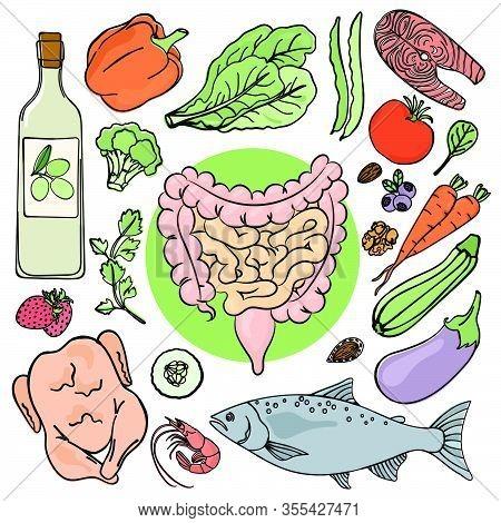 Gastrointestinal Tract Health Medicine Education Human Nutrition Vector Illustration Diet Set