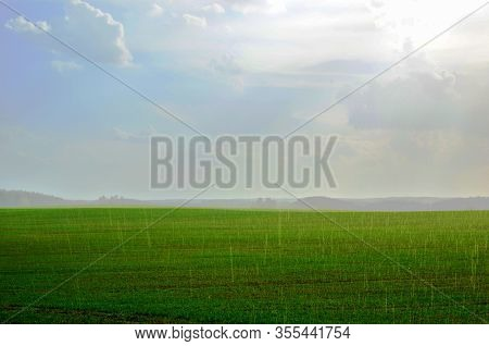 View Of A Field With Green Grass During The Rainy. Spring Weather During Short Rain. Landscape With
