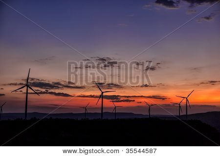 Wind Turbine Generators at sunset - Eolic Energy