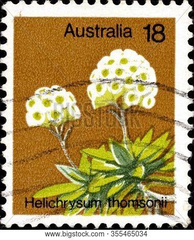 02 11 2020 Divmoe Stavropol Territory Russia Postage Stamp Australia 1975 Plants Helichrysum Thomson