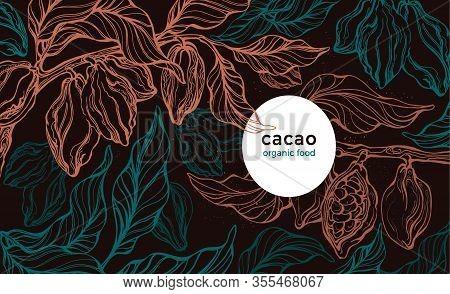 Cocoa Plantation. Vector Template, Nature Card. Hand Drawn Tree, Fresh Bean, Green Foliage. Art Retr