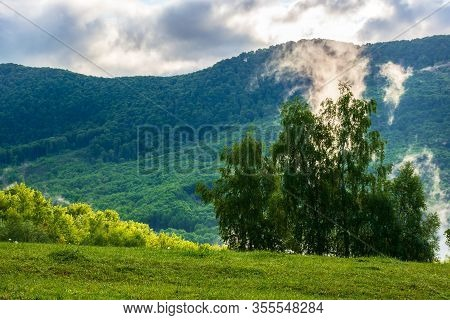 Clouds And Fog Rising Above The Beech Forest. Morning Mountain Scenery Of Carpathians In Spring. Gre