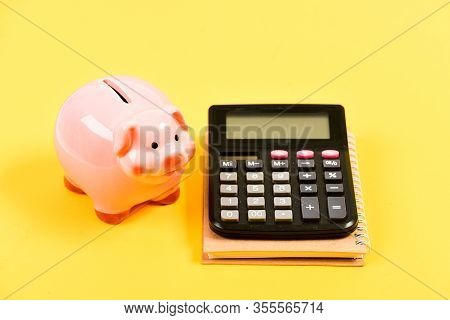 Credit Concept. Money Saving. Save Money. Banking Account. Earn Money Salary. Money Budget Planning.