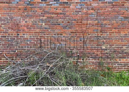 Old Country Colorful Brick Garden Wall Overgrown