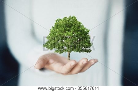 Woman Holding Green Tree In Hand, 3d Rendering