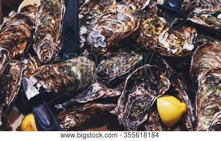 Closed Oysters With Lemon, Fresh Oyster Shell, Mollusks In Seafood Market, Aphrodisiac Sea Food Rest