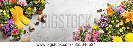 Gardening Tools on Shale Background. Spring Garden Works Concept