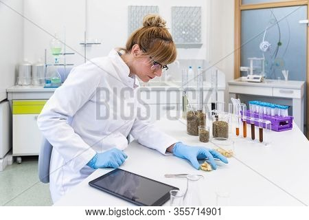 Female Chemical Scientist Inspects Hemp Terpenes Crystal In Laboratory. She Uses Tweezers And Watch