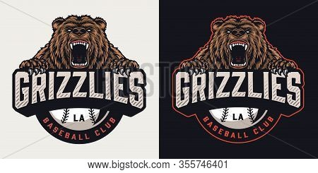 Colorful Sports Club Vintage Emblem With Ferocious Cruel Bear Mascot And Baseball Ball Isolated Vect