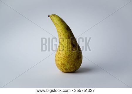 Pear Pear Conference Long Elongated Pear Shape With Rusty Green Skin On White Background