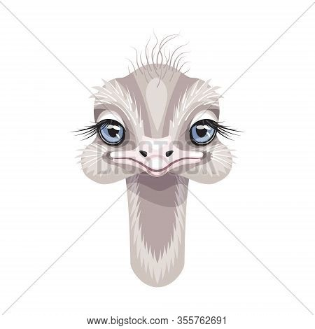 Funny Ostrich Head Isolated On White Background. Cartoon Cute Nestling With Big Blue Eyes And Long N
