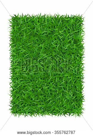 Green Grass Background 3d, Isolated On White. Lawn Greenery Nature Field. Abstract Soccer Texture Fr