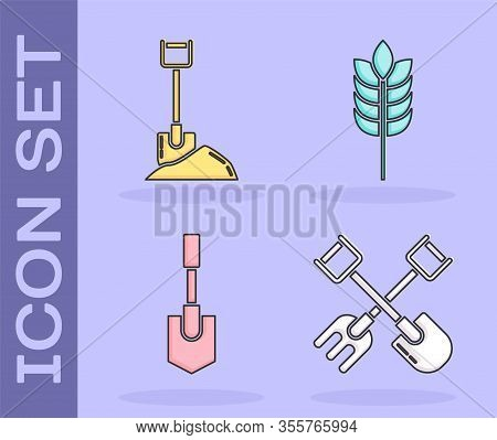 Set Shovel And Rake, Shovel In The Ground, Shovel And Cereals With Rice, Wheat, Corn, Oats, Rye Icon