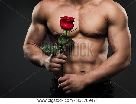 Muscular Shirtless Man Torso With Rose Flower, Sexy Athletic Boy Naked Body Studio Shot