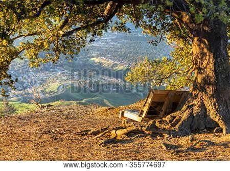 Wood bench under oak tree with early morning mountain view of the San Fernando Valley from Mission Peak in north Los Angeles, California.