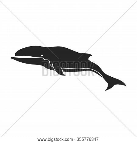 Whale Humpback Vector Icon.black Vector Icon Isolated On White Background Whale Humpback .