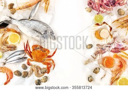 Fish And Seafood Variety, A Flat Lay Overhead Shot On White, With Copy Space. Sea Bream. Shrimps And
