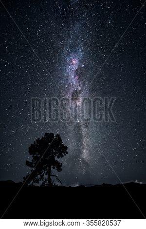 An image of a tree under the milky way night sky New Zealand February